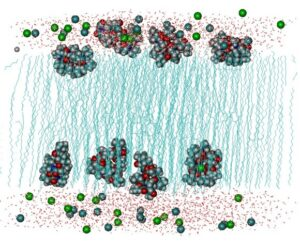 The DL_POLY Molecular Simulation Package