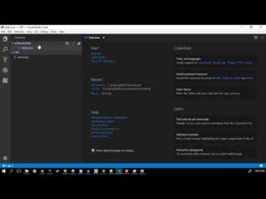 GCC & clang on windows with Visual Studio Code + bash terminal + debugging!