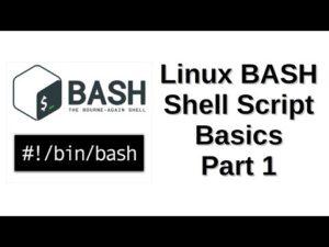 Linux BASH Shell Script Basics Part 1