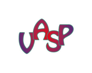 Vienna Ab initio Simulation Package (VASP)